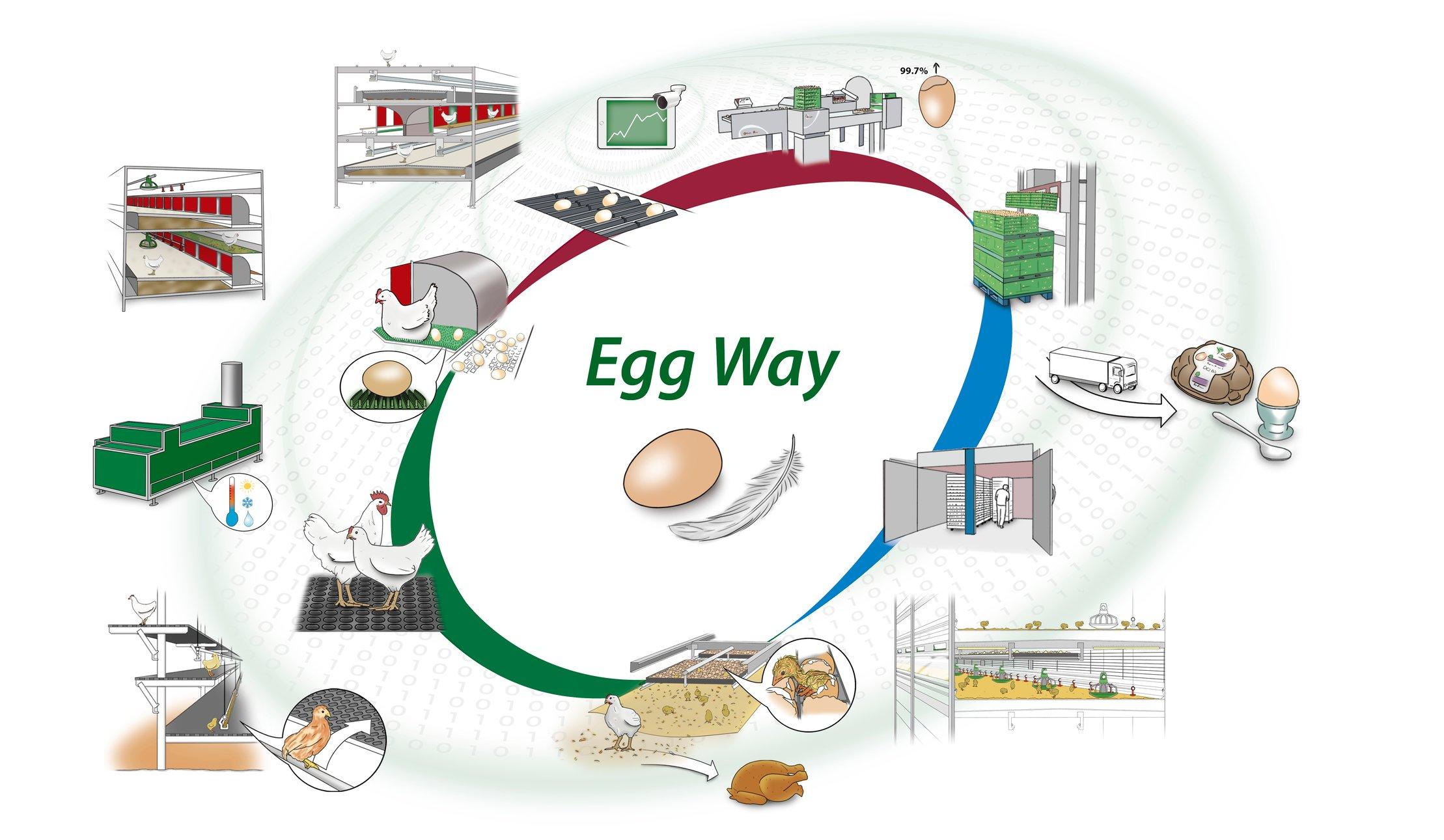 Egg-Way